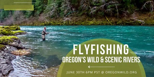 Flyfishing 800x400